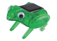 Solar powered frog photo