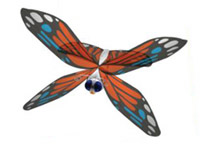 Remote controlled butterfly photo